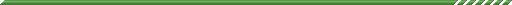 仕切り線緑1