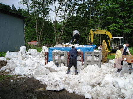 雪中貯蔵画像201061